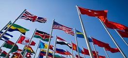 Infográfico flags