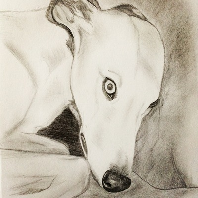 Liv Boeree desenho1
