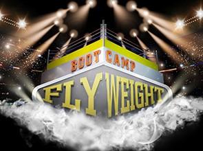 flywieght partypoker
