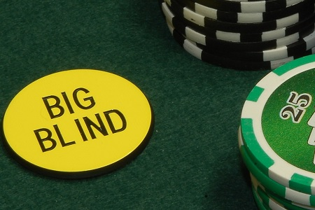 BLINDS 450
