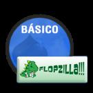 Suporte, Instalação e Treinamento do FlopZilla