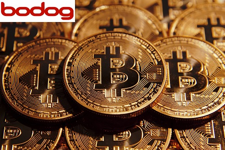 bodog bitcoin 450
