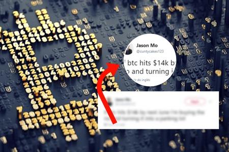 bitcoin e as criptomoedas